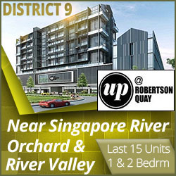 up @ robertson quay condo near river valley