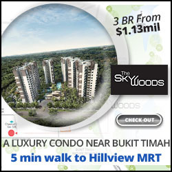 Skywoods Condo Near Hillview MRT