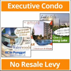 EC no resale levy