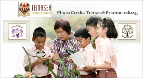 temasek-primary-school-within-1km-from-grandeur-park-residences
