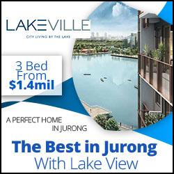Lakeville Condo near Jurong
