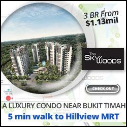 Skywoods Condo Near Hillview MRT