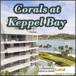 Corals at Keppel Bay